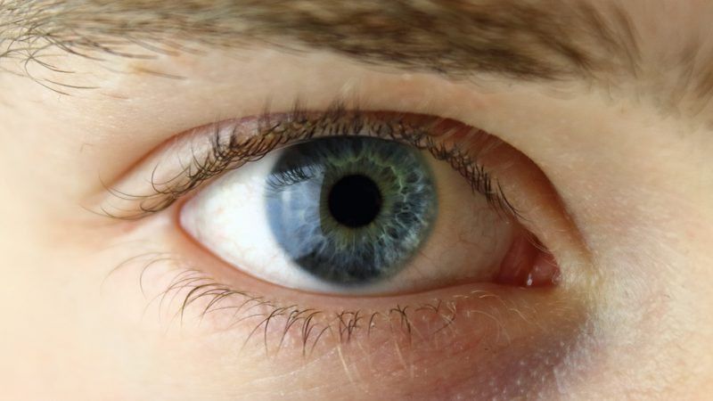 Blue eye without glasses
